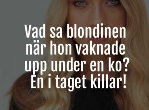 blondin skämt