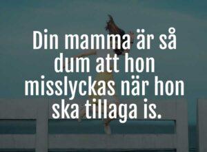 din mamma skämt 2