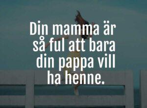 din mamma skämt 3